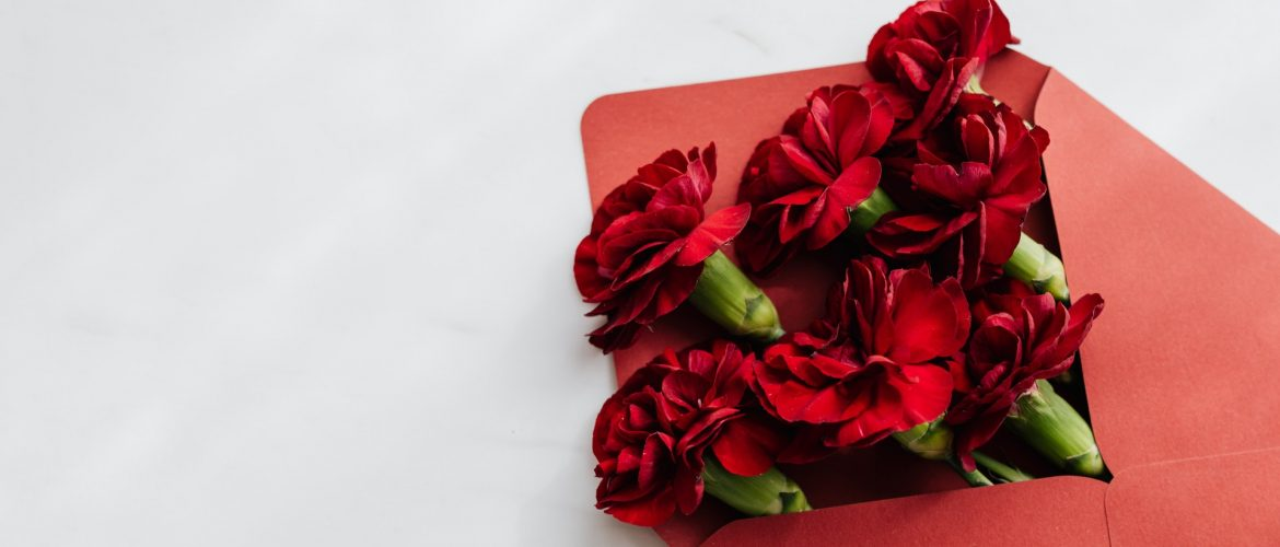Popular Apology Flowers That State I Am Sorry